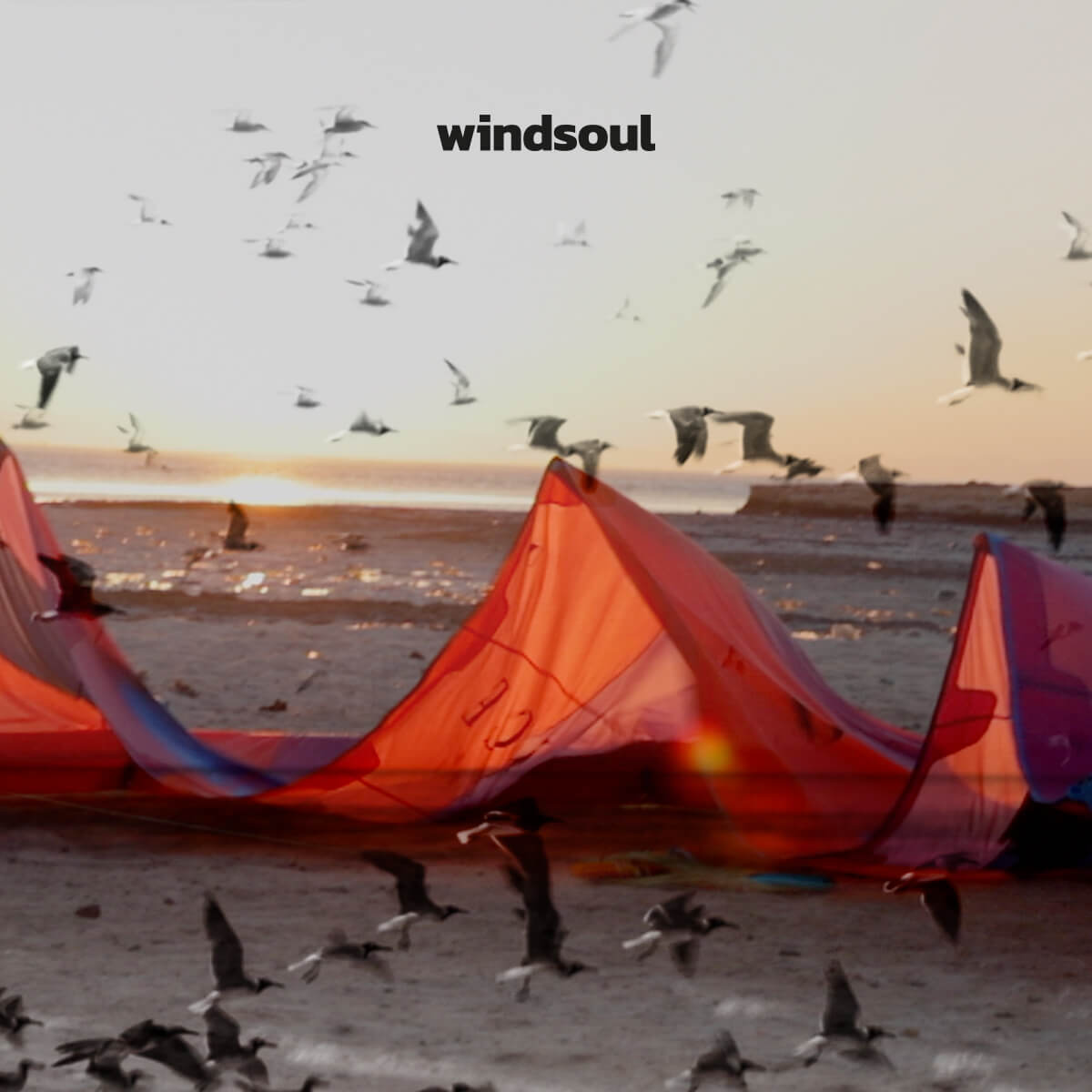 WINDSOUL | KITE SAFARI EGYPT